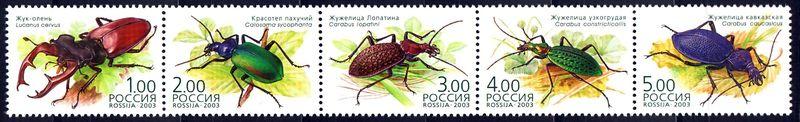 № 868-872. Bugs