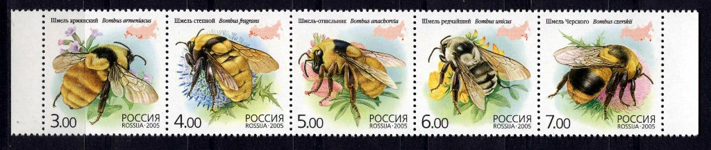 № 1034-1038. Fauna. Insects