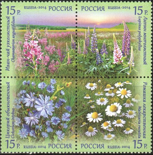№ 1810-1813. Flora of Russia. Wildflowers
