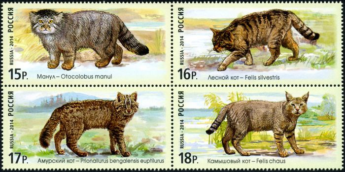 № 1846-1849. Fauna of Russia. Wild cats